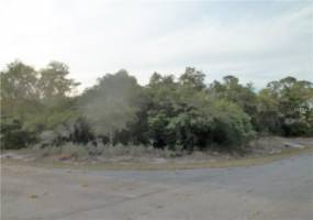 BOWFIN LANE, POINCIANA, Florida 34759, ,Land,For Sale,BOWFIN,S4846062