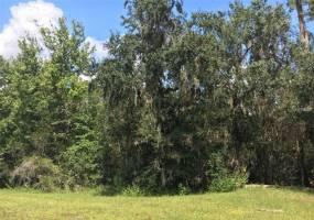 41025 20TH PLACE, MYAKKA CITY, Florida 34251, ,Land,For Sale,20TH,A4196499