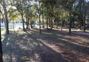 BELL LAKE, LAND O LAKES, Florida 34639, ,Land,For Sale,BELL LAKE,H2204883